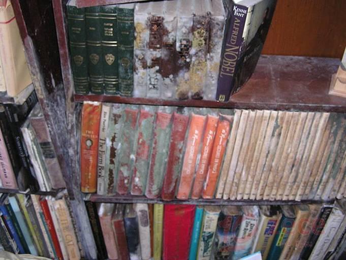 biblioteca distrusa de umiditate