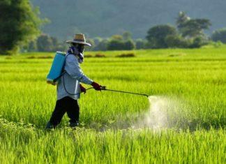 pesticide